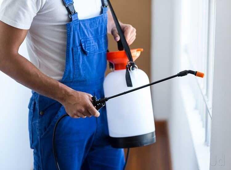 Deligence Pest Control Pvt. Ltd.